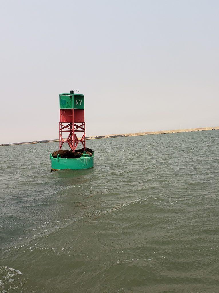 NY buoy San Joaquin River
